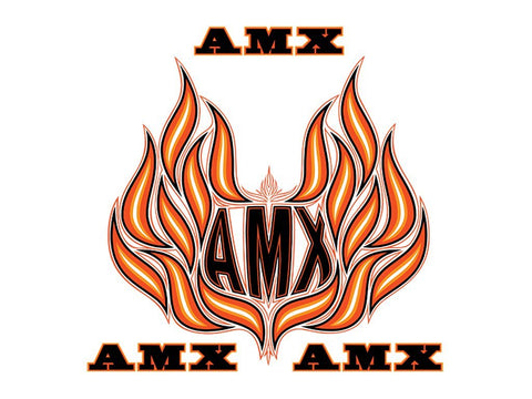 Decal and Stripe Kit, Factory Authorized Reproduction, Hood Decals & Names, 1979-80 AMC Spirit AMX (2 Color, 2 Color Choices)