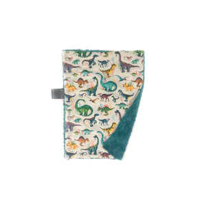 Teal Colourful Dinosaurs Minky Blanket - Small Lovey Size