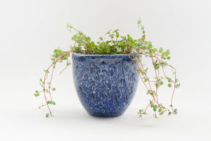 Running Cobalt Bell - Pot / Planter