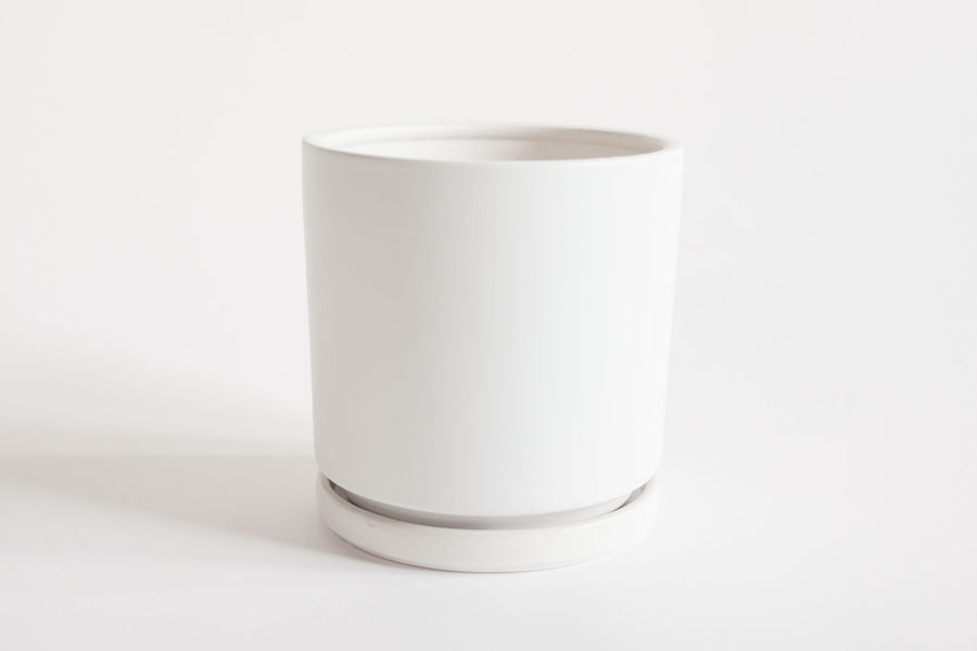 Matte White Cylinder with Tray 6""