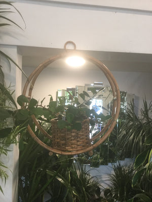 Wicker basket hanger