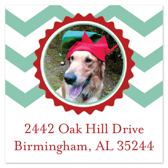 Golden Retriever in Elf Hat on Address Label