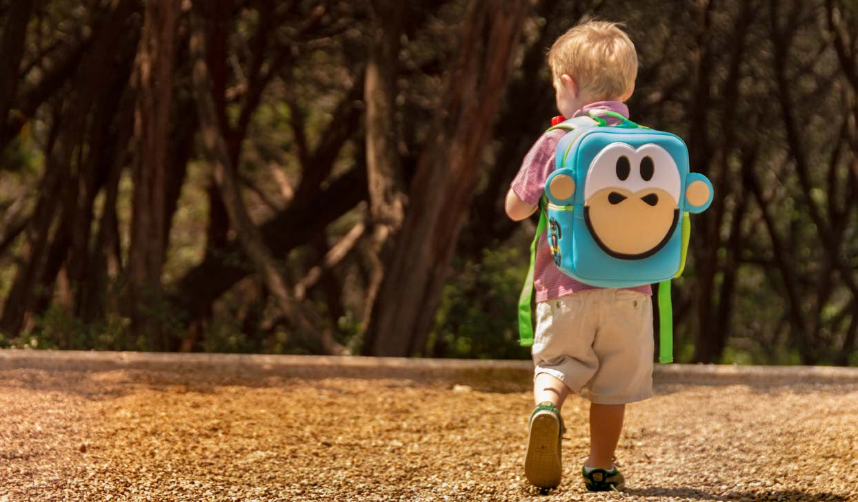 Nay-Nay Monkey Toddler Backpack, perfect for travel, washable