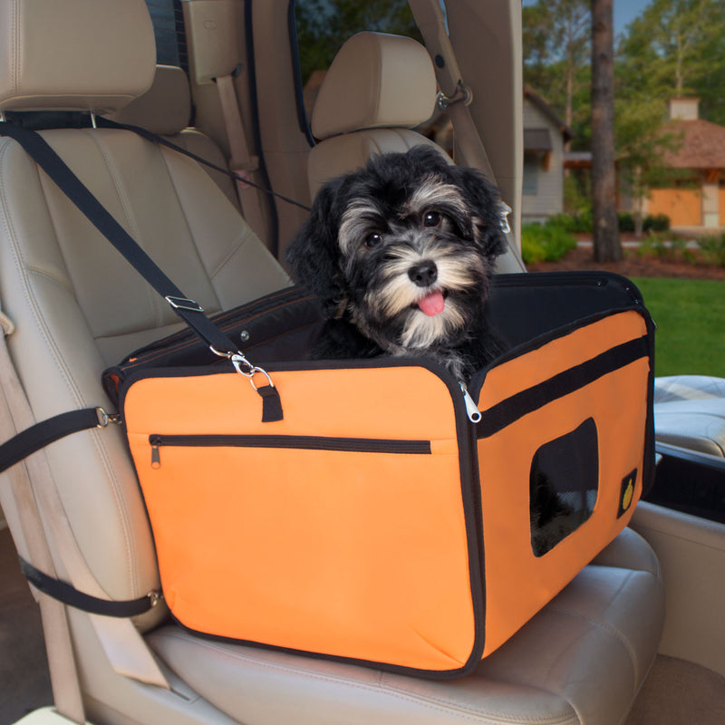 Side view of booster seat strapped in a car seat with a dog inside
