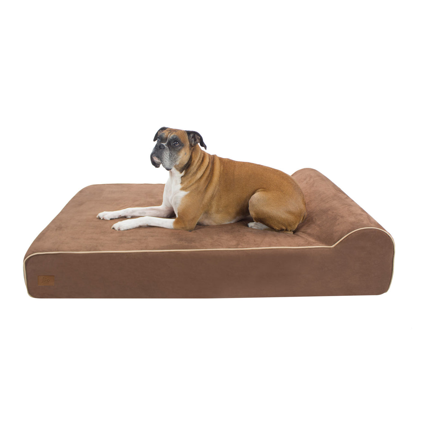 pet dog puppy proof fusion bed pampered chew ultimate