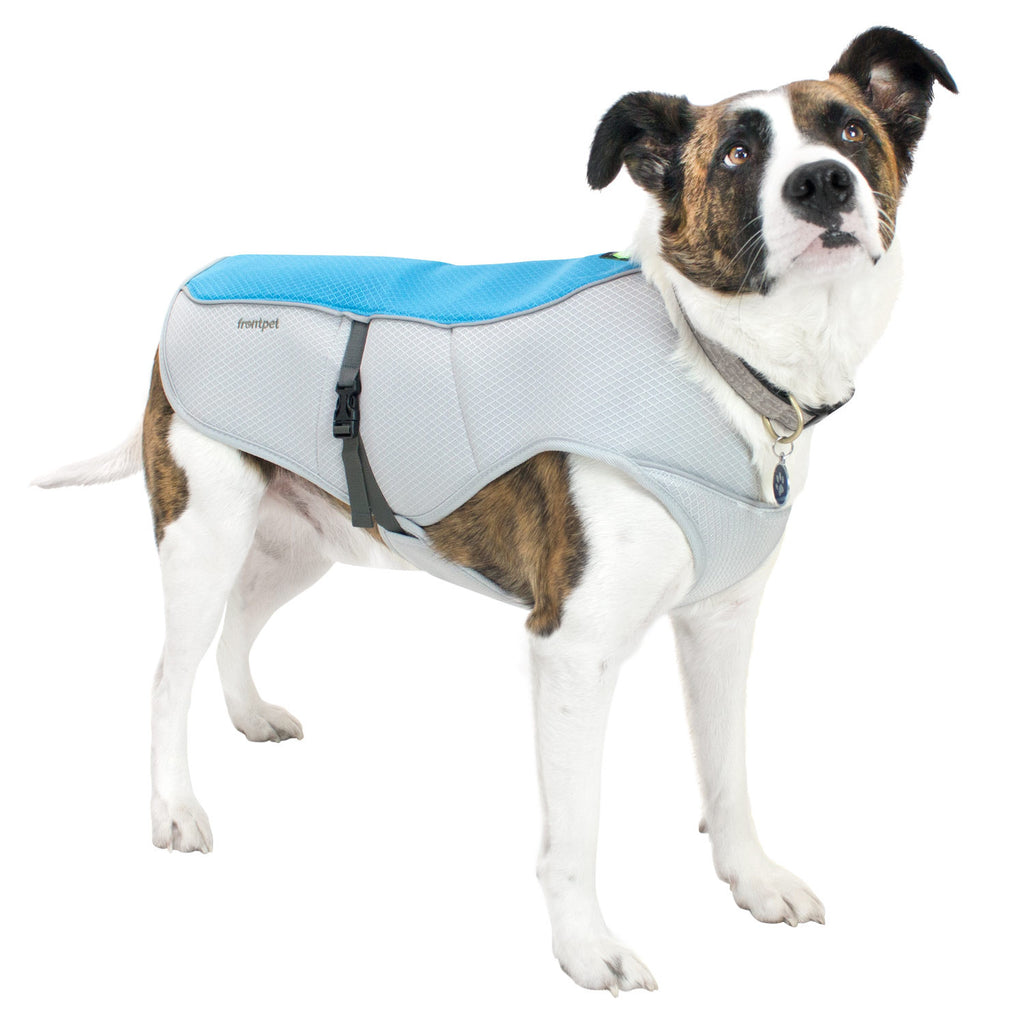Dog wearing FrontPet Dog Cooling Vest with Adjustable Side Straps and Highly Visible Reflective Padding