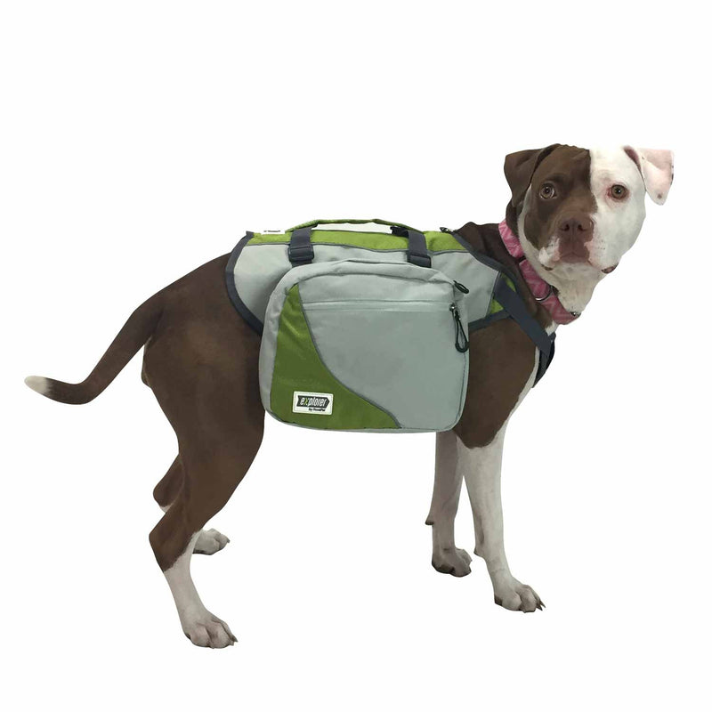Side view of dog wearing dog harness backpack