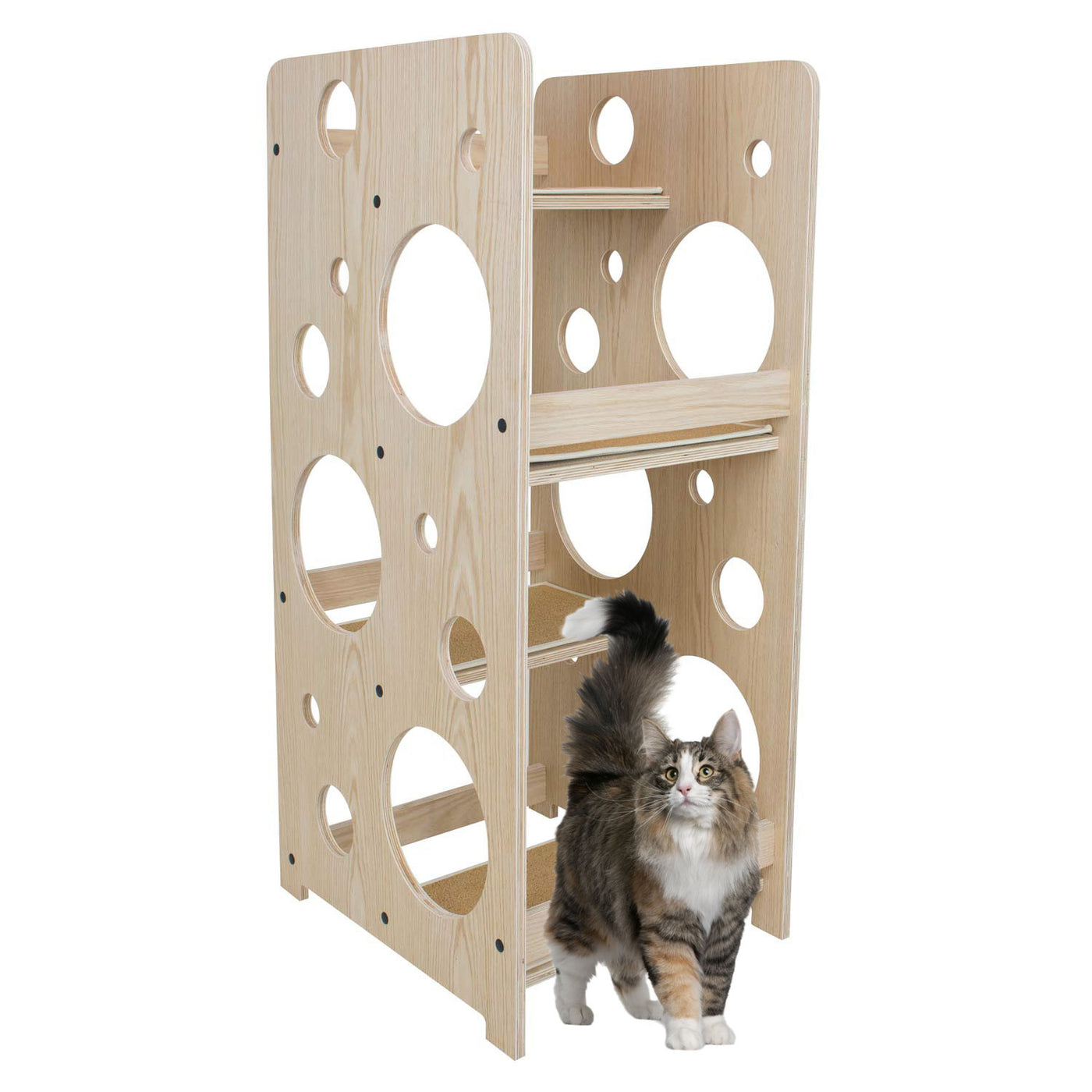 Cat furniture modern Minimalist Angled View With Cat Cuteness Cat Tree Modern Wood Bubble Cat Tower Frontpetcom