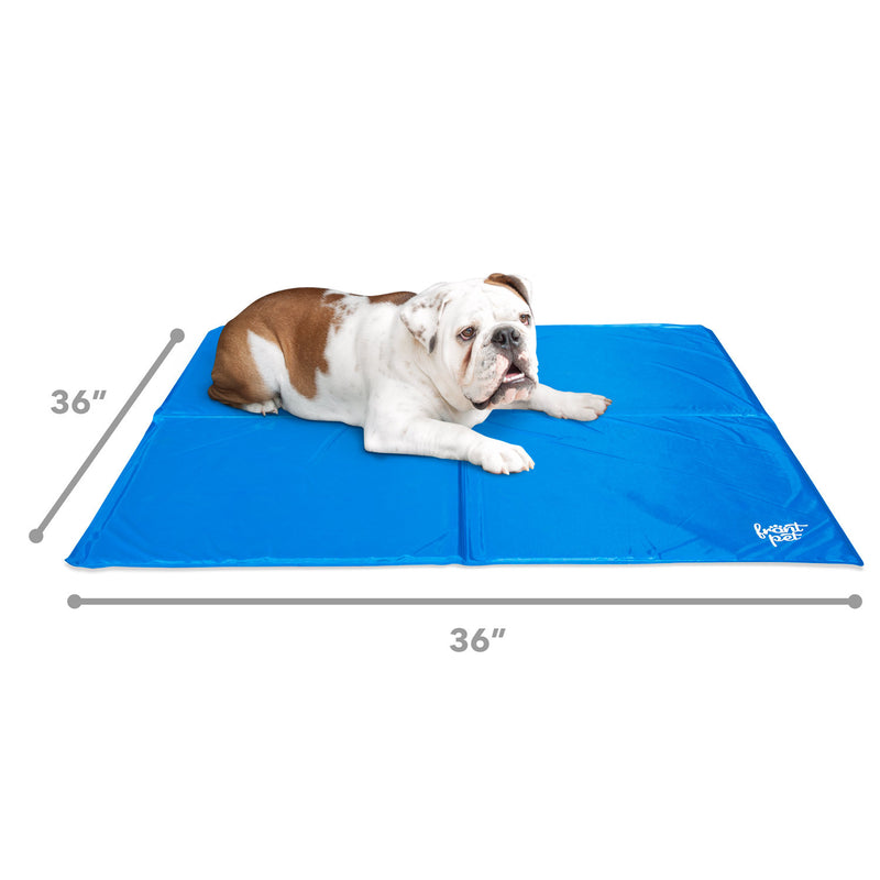 Cooling mat dimensions with dog