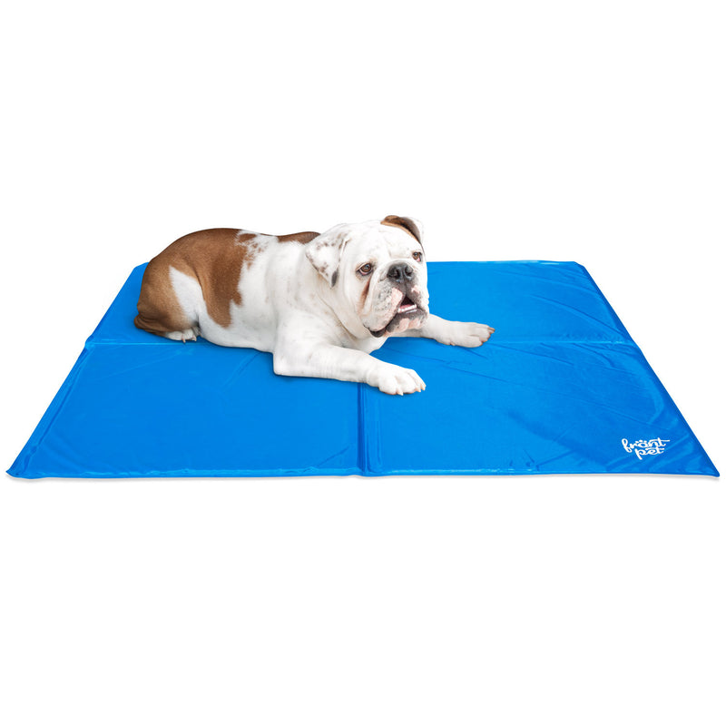 Cooling mat with dog