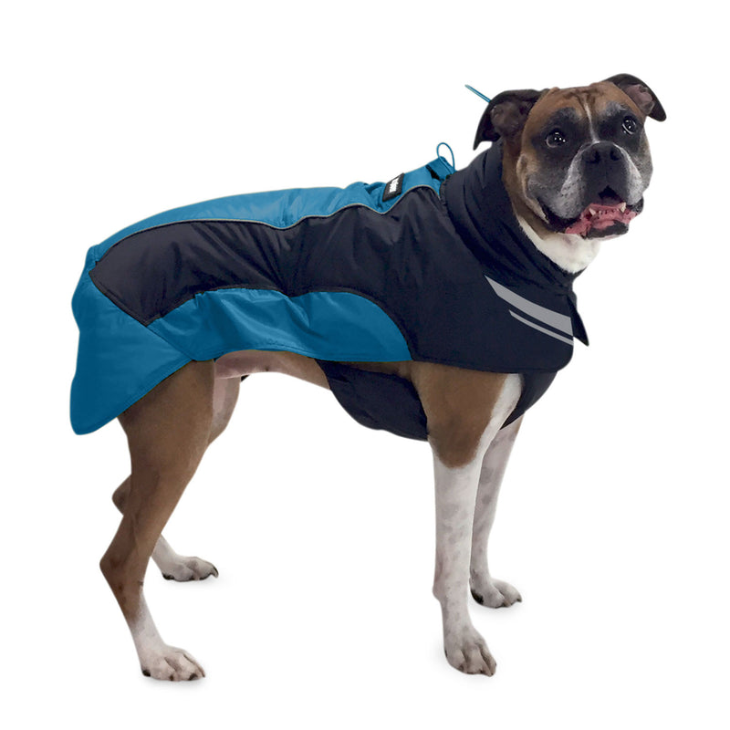 Side view of dog wearing winter jacket (blue)