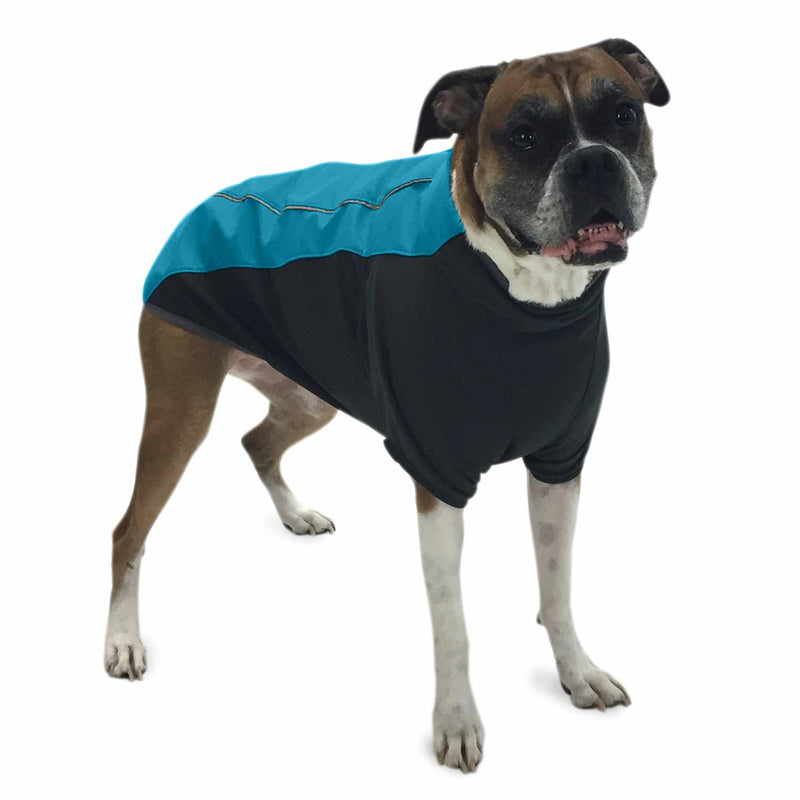 Dog wearing waterproof coat (blue)