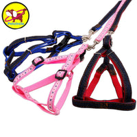 PETCIRCLE Harness & Leash - Dog E Paws