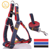 KIMHOME PET Denim Jean Harness & Leashes - Dog E Paws