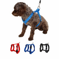 PAWZ ROAD Puppy Harness - Dog E Paws