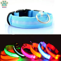 BIBS LED Glowing Dog Collar