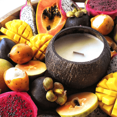 Tropical Fruits Soy Candle by Coconut Bowls