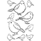 Darkroom Door Cling Stamps 7 inch X5 inch Garden Birds