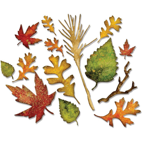 Sizzix Thinlits Dies By Tim Holtz 14 pack Fall Foliage