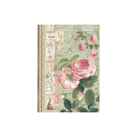 Stamperia-A4 Decoupage Rice Paper-Botanic English Roses With Snail