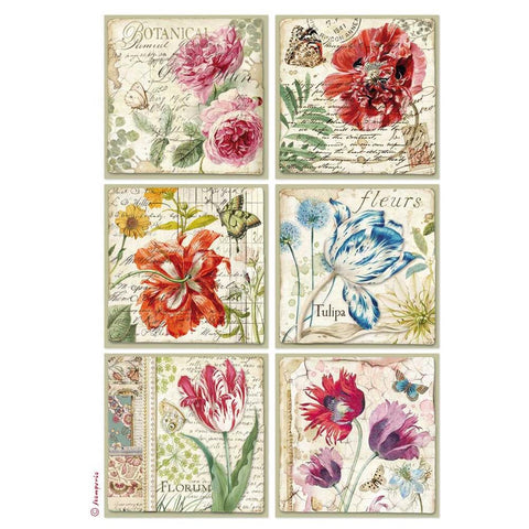 Stamperia Rice Paper Sheet A4 Botanic Cards