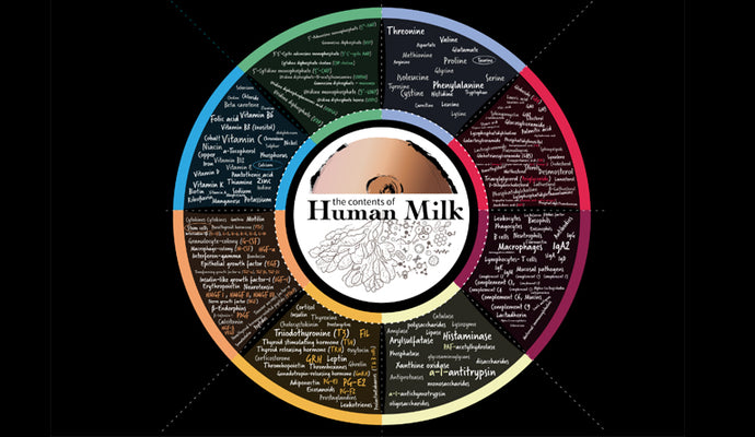 Human Milk Tailor made for Tiny Humans