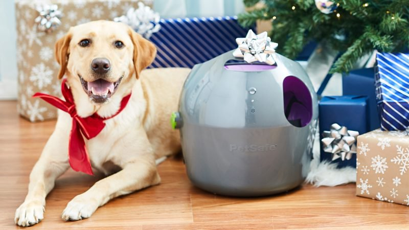 10 Best Gifts for Pets in 2018