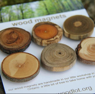 Wooden Magnets - Walters Falls, ON