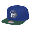 Minnesota Timberwolves Primary Logo Two Tone Snapback