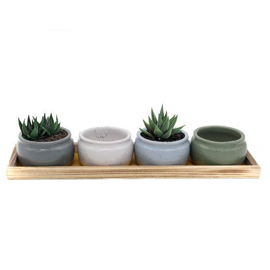 Speckled Planter and Tray Set SM