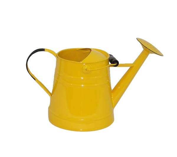 Watering Can with Handle