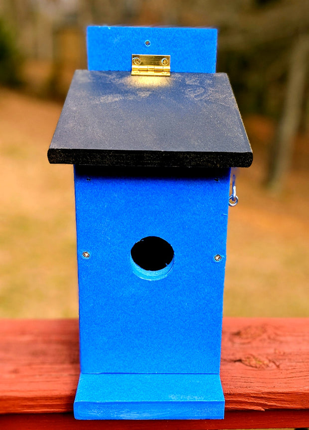 Poly Blue Bird Box
