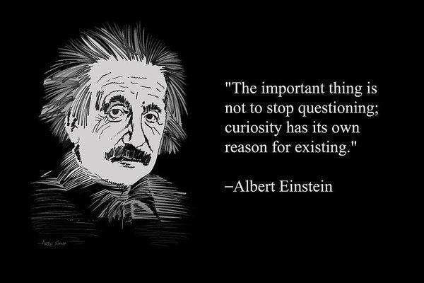 Albert Einstein Quote 13 - Art Print