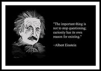 Albert Einstein Quote 13 - Framed Print