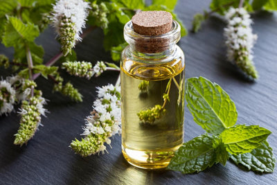 Here's what you need to know about: Peppermint Oil