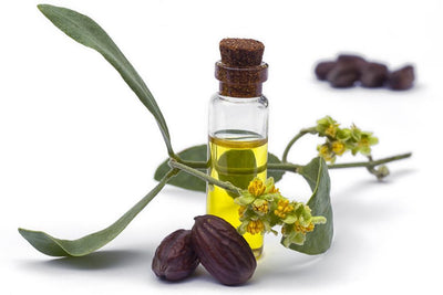 Here's what you need to know about: Jojoba Oil