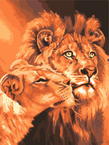 Lion Painting DIY Paint by Numbers 40cm x 50cm