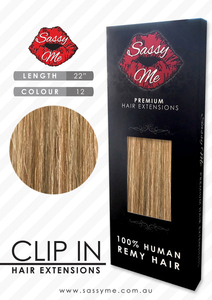 Clip In Hair Extensions - #12