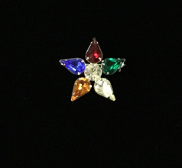 Multi Color Eastern Star OES Brooch or Necklace Pendant