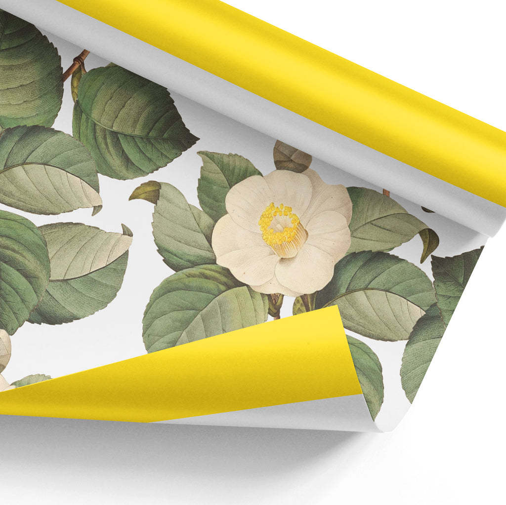 Camellia Gift Wrap Sheets