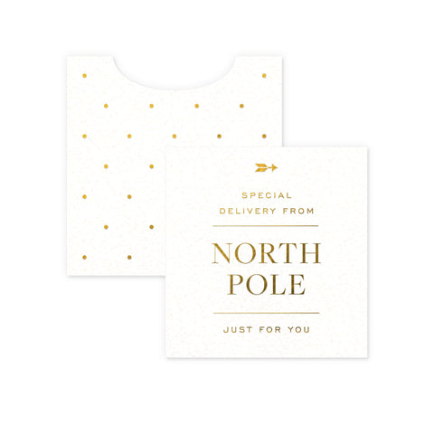 North Pole Mini Enclosure