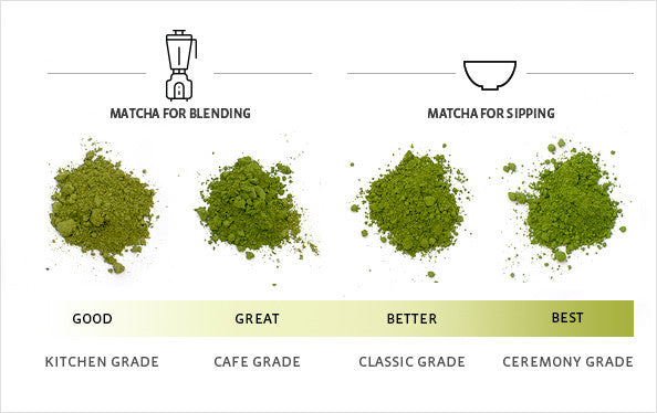 matcha for blending and sipping