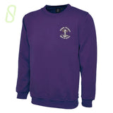 Mount Primary School Crew Neck Jumper, Purple Round Neck Sweatshirt - The Schoolwear Outlet - Shop Now