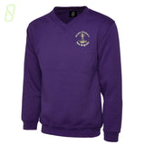 Mount Primary School V-Neck Jumper, Purple V-Neck Sweatshirt - The Schoolwear Outlet - Shop Now