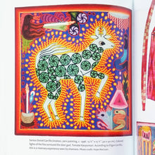 The Shaman's Mirror: Visionary Art of the Huichol By Hope MacLean