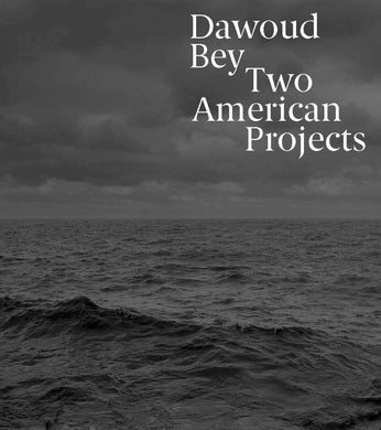 Dawoud Bey: Two American Projects