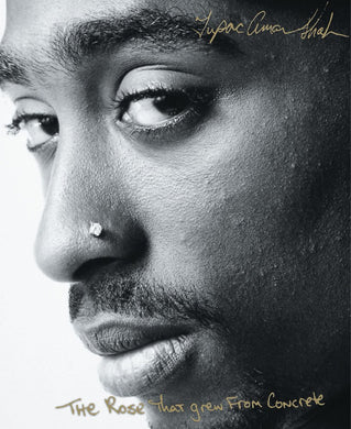 The Rose That Grew From Concrete by Tupac Shakur