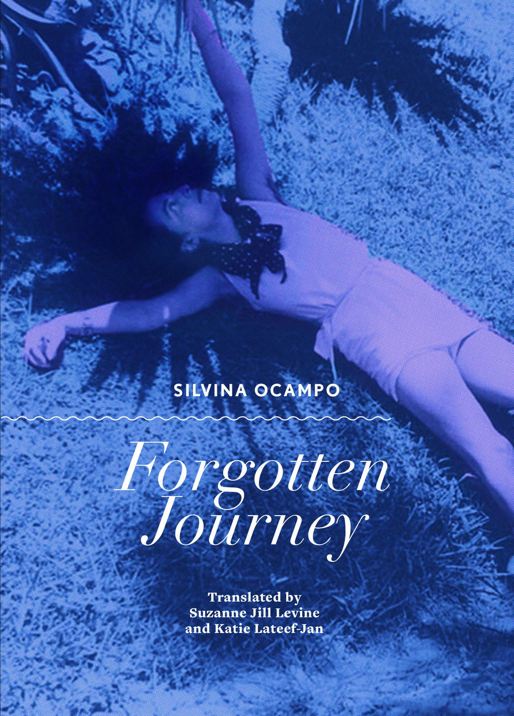 Forgotten Journey by Silvina Ocampo