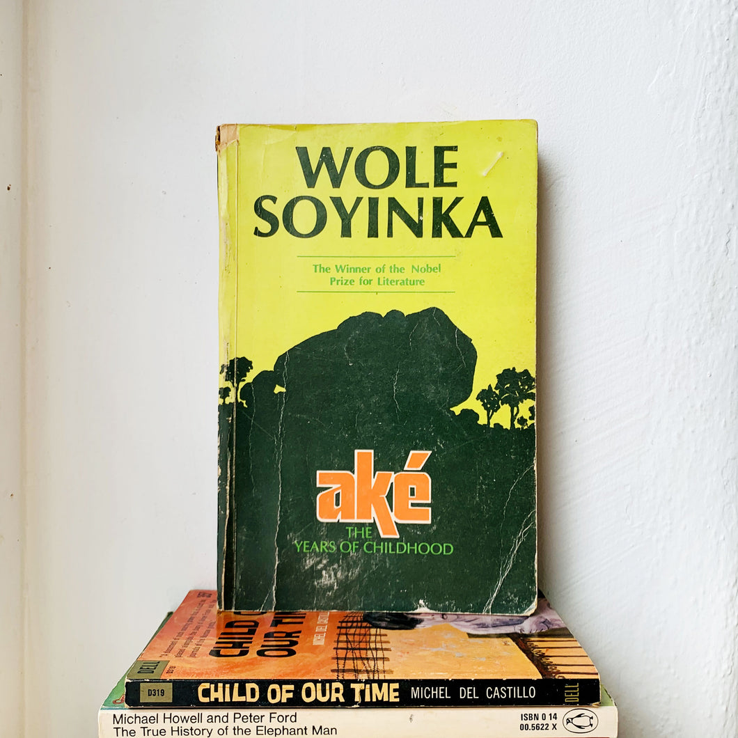 Aké: The Years of Childhood by Wole Soyinka