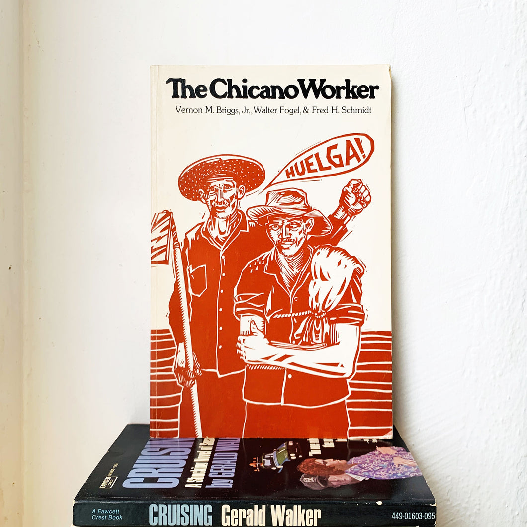 The Chicano Worker by  Vernon M. Jr. Briggs, Walter Fogel, Fred H. Schmidt
